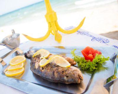 Τσιπούρα, Φαγκρί, Κουτσομούρα και Φρέσκα Ψάρια μαεστρικά προετοιμασμένα στην Ψαροταβέρνα Island Basket Αρτέμιδα (Λούτσα)